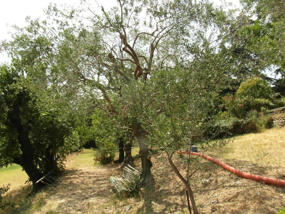 lavori giardiniere bologna